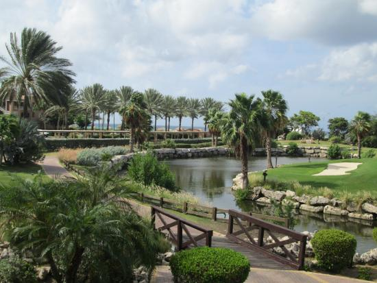 Golf course picture of divi village golf and beach - Divi village golf and beach resort ...