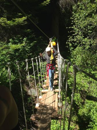 Tamarack, ID: Rope bridge among the trees heading to another zip line