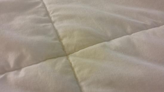 Aspen Suites Rochester: Comforter