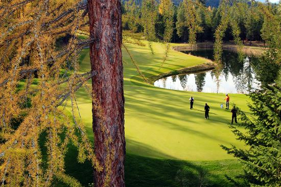 Shadow Mountain : Number 17 green.