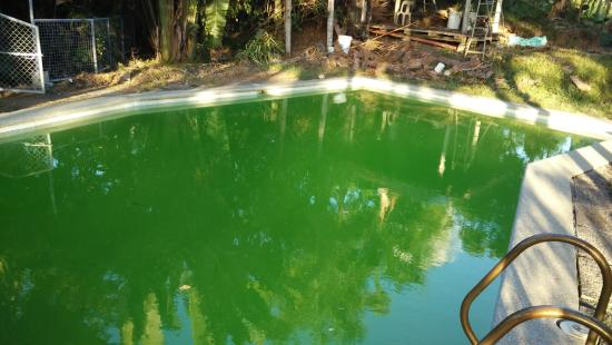 The Tamarind Tree Resort: looks like a swimming pool in horror movies!