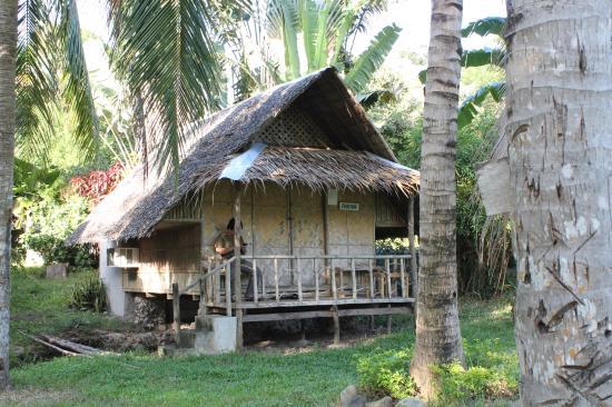 The Tamarind Tree Resort : beach front nipa house, BAD!