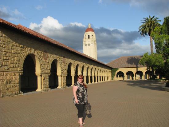 Palo Alto, CA: на пути к подъему