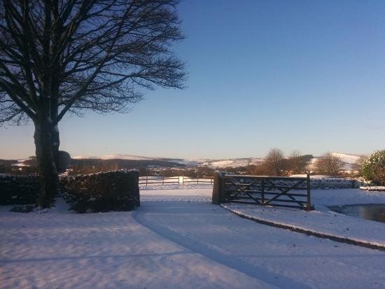 Barms Farm : View from the lounge