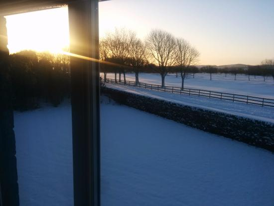 Barms Farm : View from the room