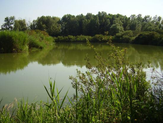 Riserva Naturale Gaggio Nord