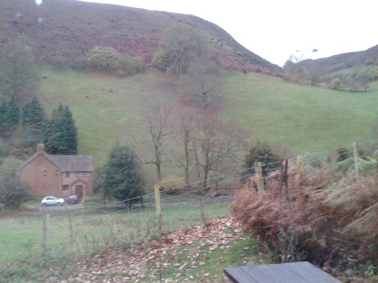 All Stretton, UK: The View