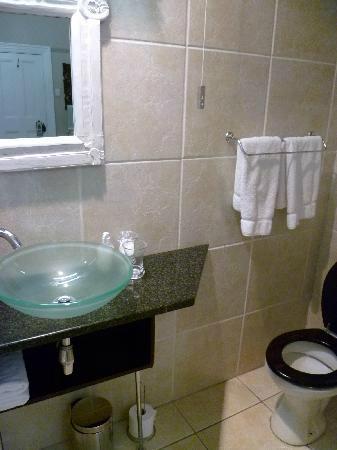 Leeuwenvoet House: En-suite Shower and Toilet