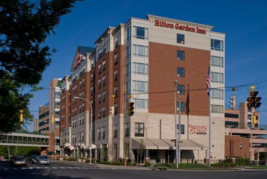 Albany Hilton Garden Inn Hilton Garden Inn Albany Medical Center