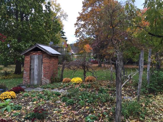 Trumansburg, NY: Back Gardens