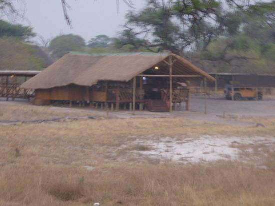 Camp Savuti: Camp Savuti