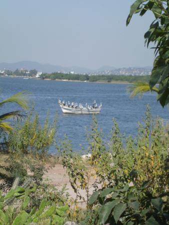 Isla de la Piedra, Messico: Pelicans on a boat