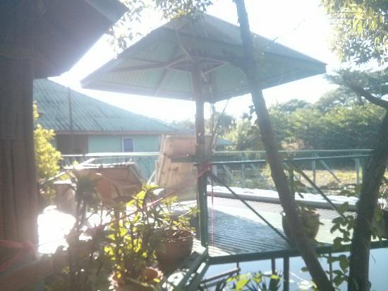 Sam's Jungle Resort Guest House : IMG_20151122_082438_large.jpg