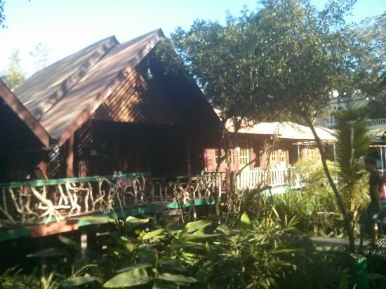 Sam's Jungle Resort Guest House : IMG_20151122_082426_large.jpg