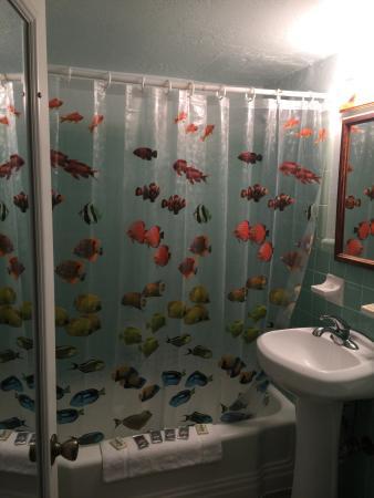 South Beach Inn: photo1.jpg