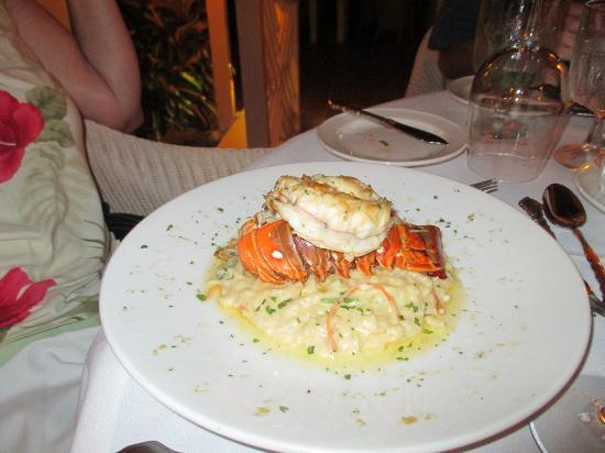 Mount Nevis Hotel Restaurant: Lobster risotto