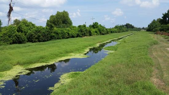 Bayou Des Familias, Barataria National Preserve, Louisiana