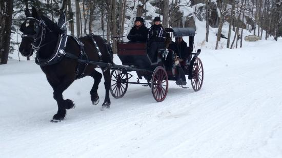 Port Carling, Canadá: Winter carriage ride