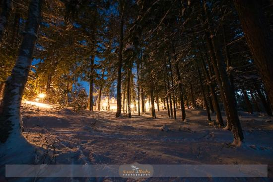 Port Carling, Kanada: Inn Winter