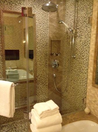 Goethe Hotel : Душевая в ванной комнате