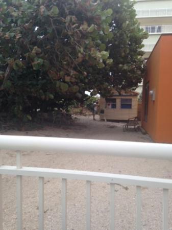 Jensen Beach, FL: Man beside our room
