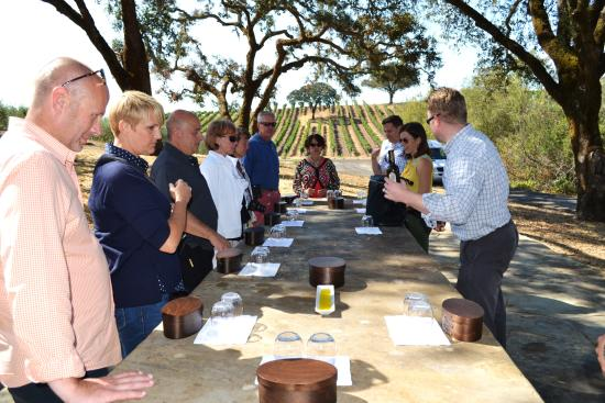 Jordan Vineyard & Winery: Group tasting