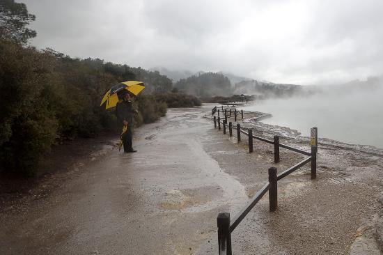 Grumpy's Transfers & Tours: Henry, our amazing tour guide from Grumpy's, in a rainy Wai-o-Tapu