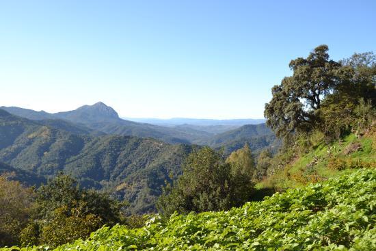 La Posada del Recovero: Vista desde sendero Los Saucillos.