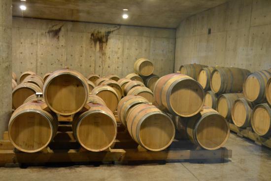 Bloomfield, Canadá: Barrels