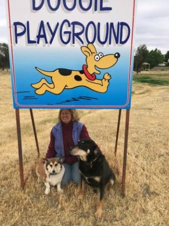 Kerang, Australia: Doggy Playground