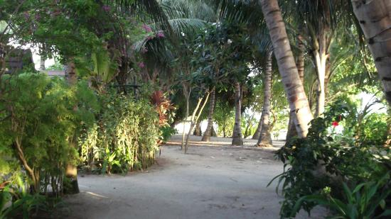 Kuramathi: Paradise