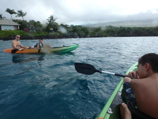 Clear Kayaks Maui: Nice new Kayaks