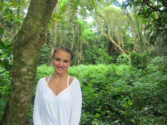 Kaneohe, Χαβάη: Jungle!