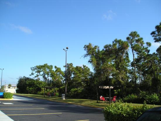 Hilton Hotel Punta Gorda Fl