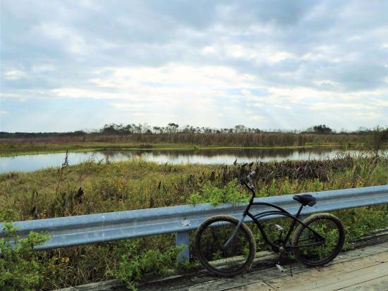 Leesburg, FL: Bike on bridge