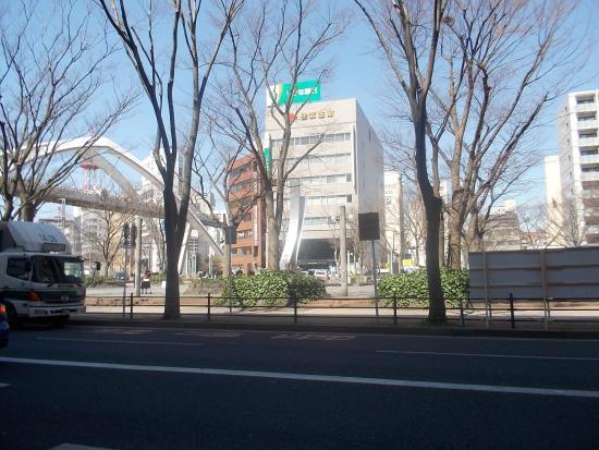 치바 사진