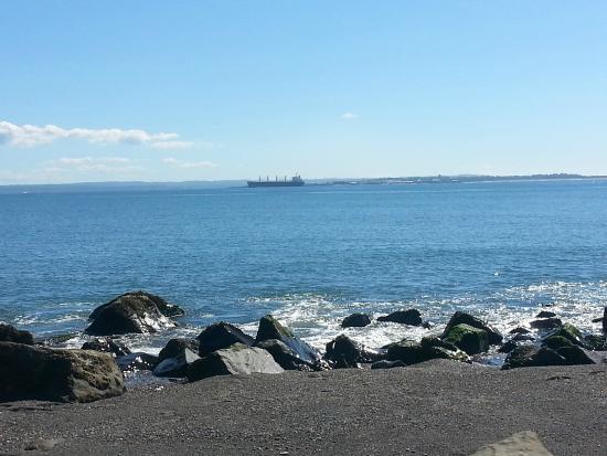 Ocean Shores, WA: Damon Point Beach, a short walk away.