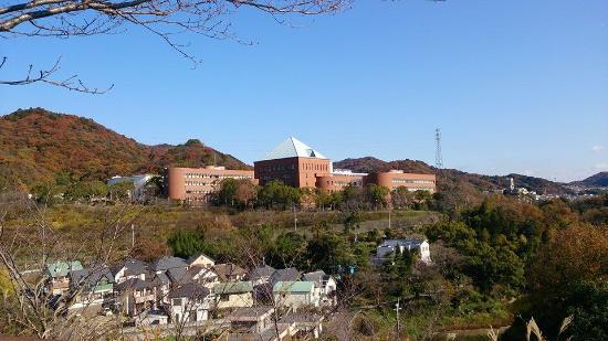 近畿大学附属和歌山高等学校