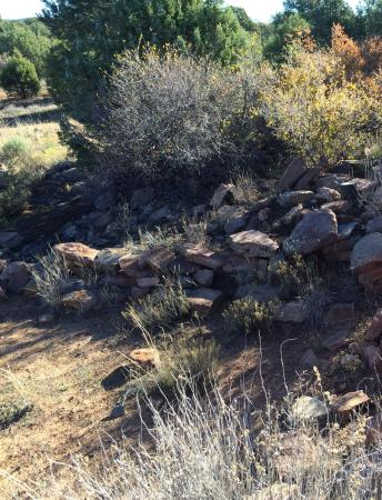 Payson, AZ: Shoo-fly Indian Archaeological Site