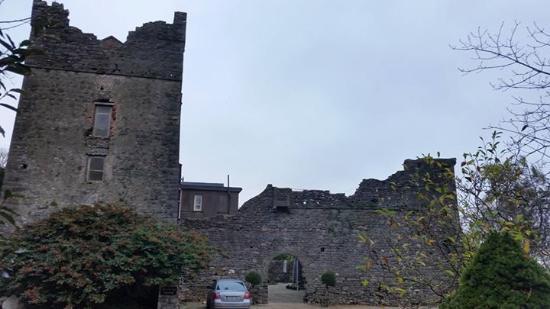 Drinagh, Ирландия: Killaine Castle B&B