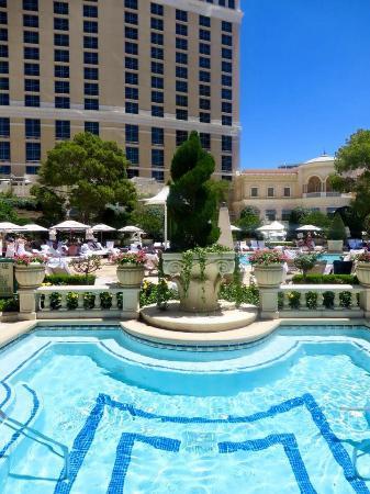 Cabana Plunge Pool Picture Of Bellagio Las Vegas Las Vegas Tripadvisor