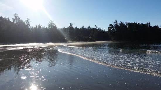 Ocean Village Beach Resort: the beach area at low tide, Mackenzie beach