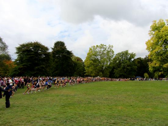 Mcquaid Invitational At Genesee Valley Park Picture Of Genesee