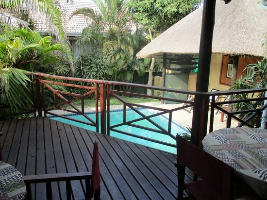 Hornbill House : The pool