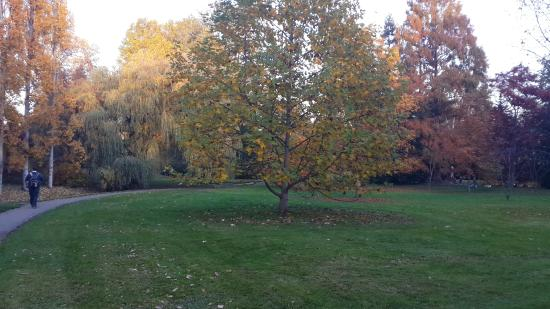 Hohenheimer Garten