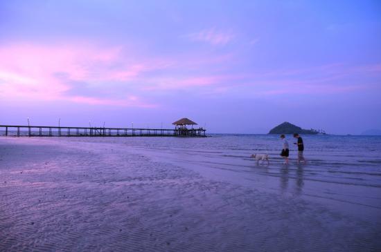 Koh Mak Cococape Resort: วิวหน้าโรงแรม