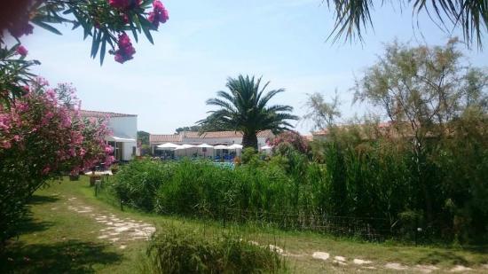 Hotel La Tramontane: jardin