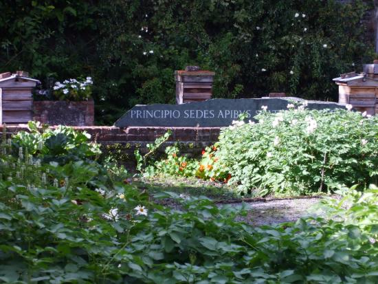 Mirehouse U0026 Gardens   The Bee Garden