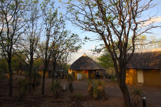 Olifants Rest Camp: Typisches Areal
