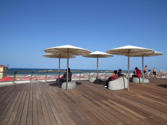 Bograshov Beach: Lugar para descanso